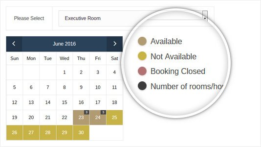 WordPress Booking Theme With Availability Calendar